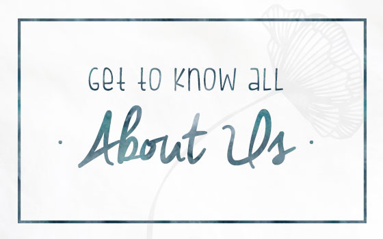 Get to know all About Us